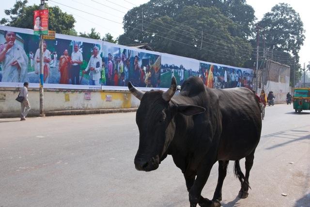 Expo_Varanasi_1