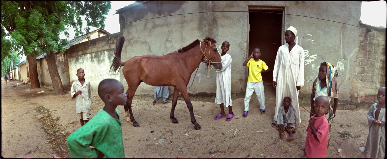 29Horse_Eye_on_Africa_mvg