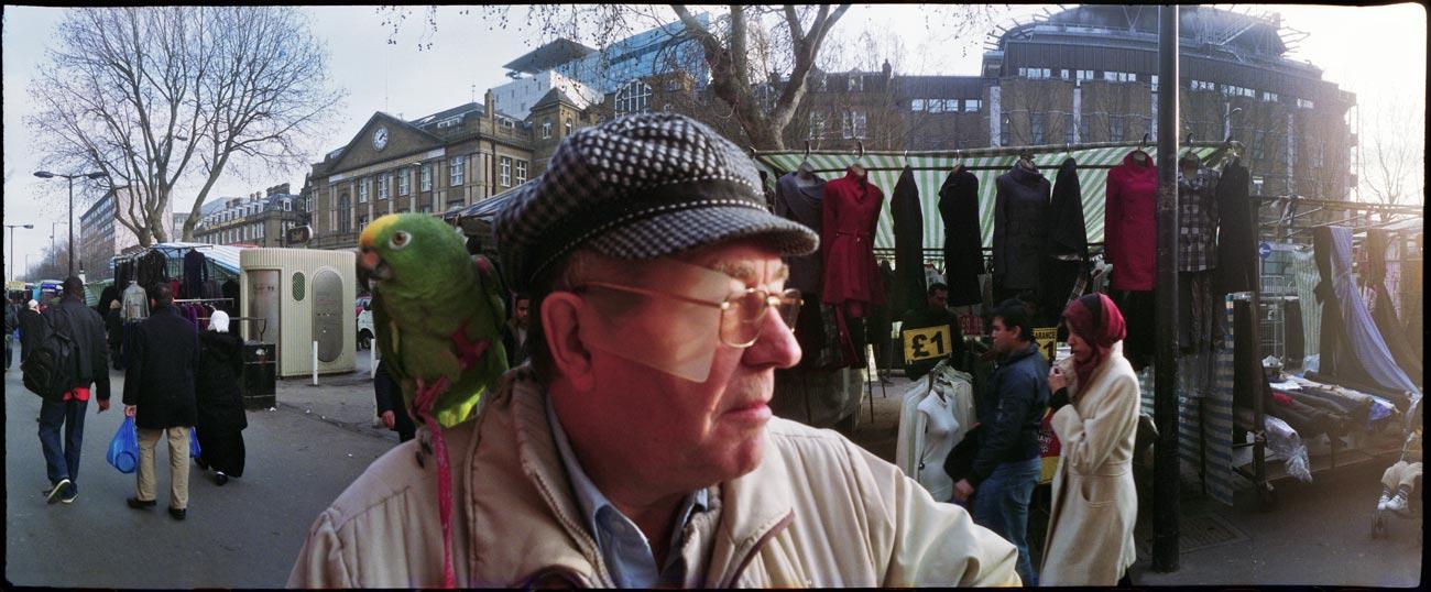 London_Calling_Parrot